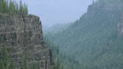 ws view of deep rock canyon at chasm provincial park / clinton, british columbia, canada - tal stock-videos und b-roll-filmmaterial