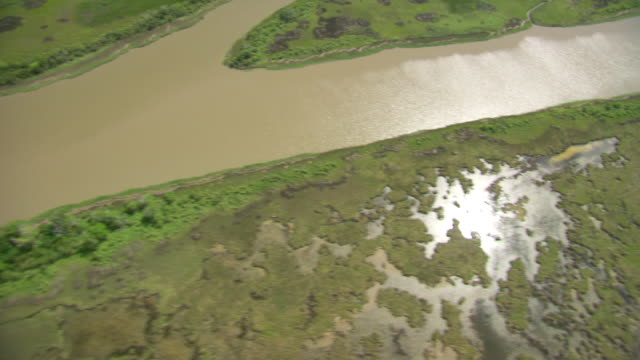 aerial ws view of delta gulf side of river / new orleans, louisiana, united states - river mississippi stock videos & royalty-free footage