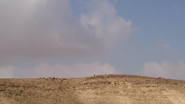 WS PAN View of desert area, animals in background / Israel
