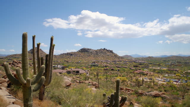 ws t/l view of desert landscape / scottsdale, arizona, usa - arizona stock-videos und b-roll-filmmaterial
