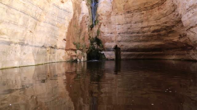 ws view of desert spring ein ovdat, main water source in negev desert / negev desert, israel - negev stock videos & royalty-free footage