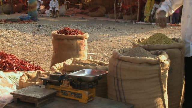 ms view of different spices in market / rajkot, india - sack stock-videos und b-roll-filmmaterial