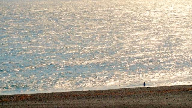blick auf djupalonssandur oder die schwarze lava pearl beach ist ein wunderschöner ort auf snæfellsnes in west-island, slow-motion zu besuchen - snäfellsnes stock-videos und b-roll-filmmaterial