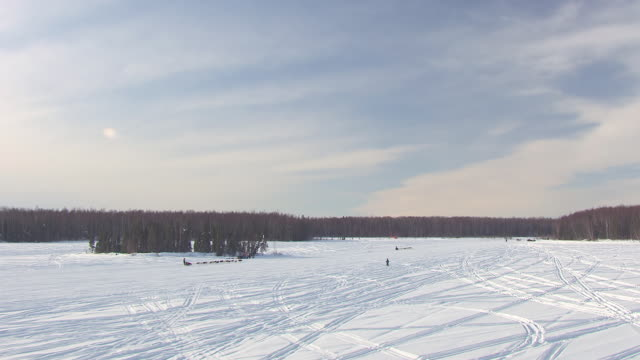 WS AERIAL TS View of dogsled team running through snow trail during Iditarod Trail Sled Dog Race / Willow, Alaska, United States