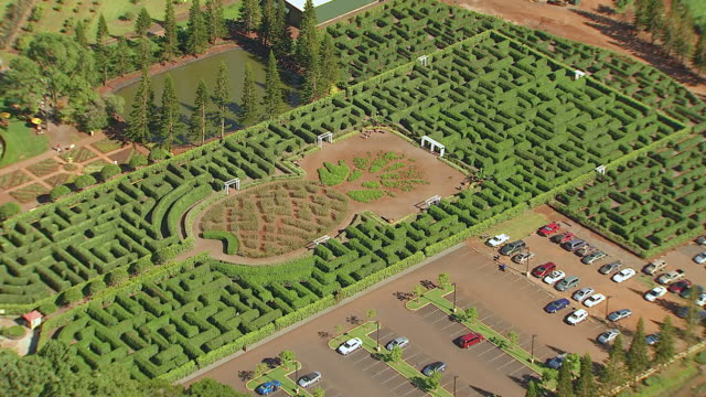 ws zo aerial view of dole pineapple maze on island of oahu / wahiawa, hawaii, united states - maze stock videos and b-roll footage