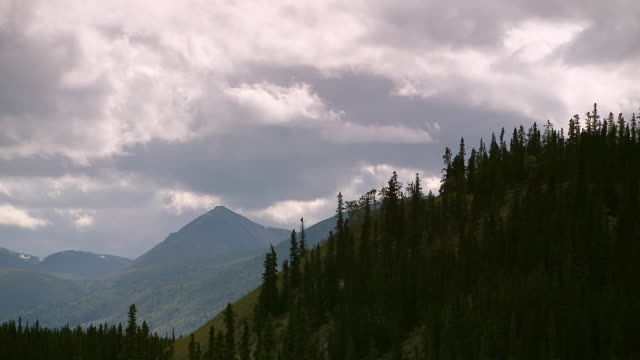 vidéos et rushes de ws t/l view of dramatic clouds moving over mountain range and evergreen trees near kathleen lake, kluane national park and reserve / yukon, canada - canada