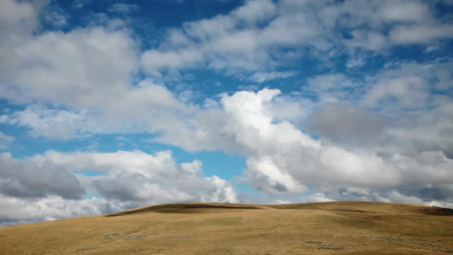 ws t/l view of dramatic puffy clouds boiling over golden prairie hills / white sulphur springs, montana, united states - prairie stock videos & royalty-free footage