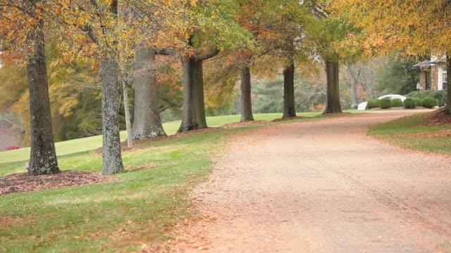 vídeos y material grabado en eventos de stock de ws pan tu view of driveway lined with trees and fallen leaves / richmond, virginia, usa. - fundido en negro