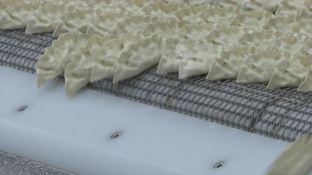 vídeos de stock, filmes e b-roll de view of dropping the dumplings into a different line of moving conveyor - bolinho de massa