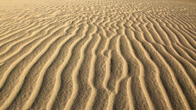 MS View of Dune at beach near Santa Maria / Santa Maria, Sal, Cape Verde