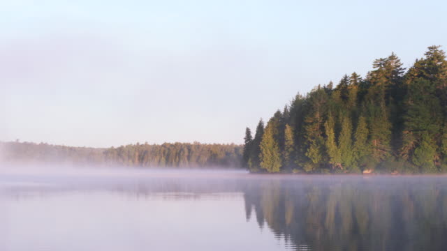 WS PAN View of Early morning fog on Long Pond with Wilderness / Maine, United States