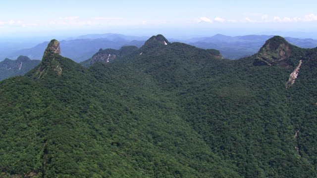 vídeos de stock, filmes e b-roll de ws aerial view of ecological station jureia itatins forest valley nad mountain / sao paulo, brazil - área arborizada