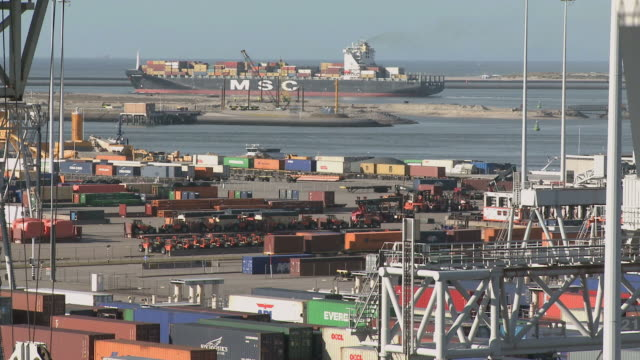 ws zo view of ect container terminal at harbour / rotterdam, southholland, netherlands - hafen stock-videos und b-roll-filmmaterial