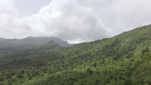 WS AERIAL POV View of El Yunque Rainforest / Main Island, Puerto Rico, United States