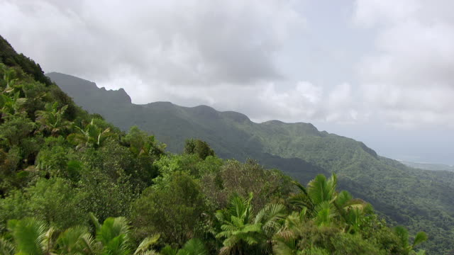 WS AERIAL POV View of El Yunque Rainforest / Main Island, Puerto Rico, United States