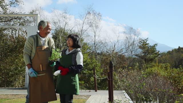 MS View of elderly couple in garden / Fujikawaguchiko, Yamanashi, Japan