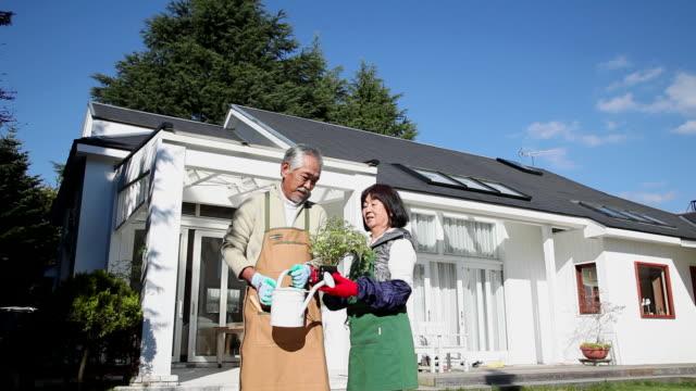 MS View of elderly couple talking about plant  / Fujikawaguchiko, Yamanashi, Japan