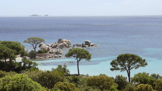 vidéos et rushes de ws ha view of elevated view of beach with pine trees, nature preserve / palombaggia, corsica, france - pin