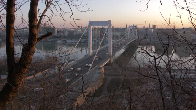 View of Elizabeth Bridge and River Danube at sunrise, UNESCO World Heritage Site, Budapest, Hungary, Europe