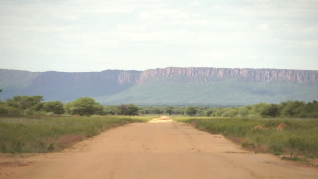 ws view of empty dirt road and landscape with mountainous / d2440, otjiwarongo, namibia - wiese video stock e b–roll