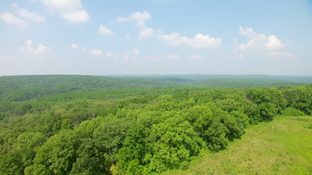 ws aerial pov view of endless green forest / pope county, minnesota, united states - minnesota stock videos & royalty-free footage