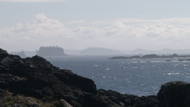 ws zo zi view of entire bay / ucluelet, british columbia, canada  - komplett stock-videos und b-roll-filmmaterial