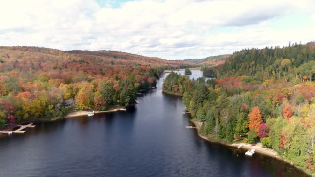 view of fall color in algonquin park and ottawa river in whitney, ontario, canada at daytime - ontario canada stock videos & royalty-free footage