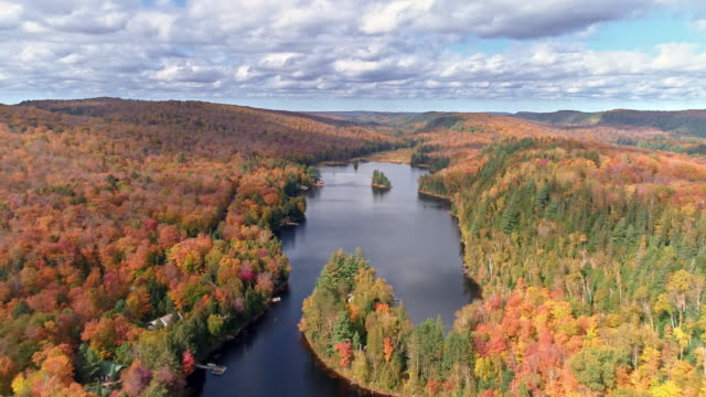 view of fall color in algonquin park and ottawa river in whitney, ontario, canada at daytime - オタワ点の映像素材/bロール