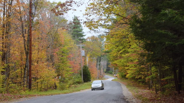 WS View of fall colors road with cars driving in fall foliage color in Northern New England / Bethel, Maine, United States