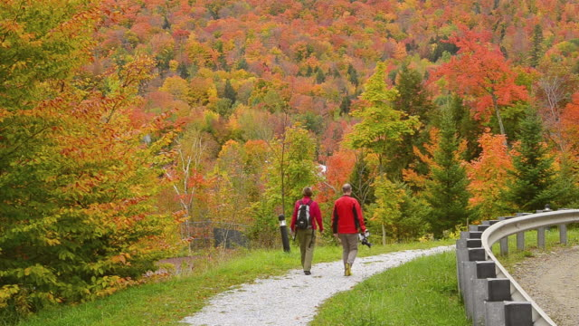 ws view of fall foliage colors tourist couple walking on trail in mountains 5 / littleton, new hampshire, united states - gemeinsam gehen stock-videos und b-roll-filmmaterial