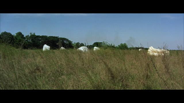 stockvideo's en b-roll-footage met ws view of falling parachutes in field - breedbeeldformaat