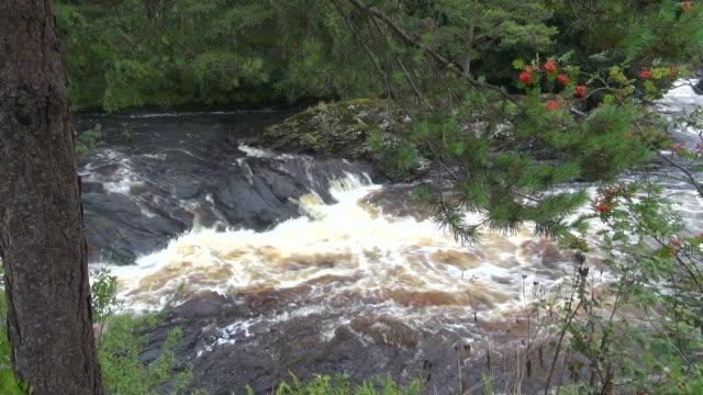 vídeos de stock, filmes e b-roll de ms view of falls of killin and river dochart at trossachs / killin, stirling, scotland - stirling