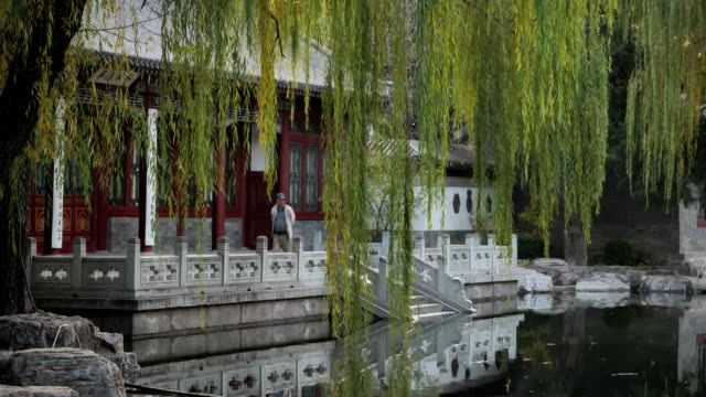 view of famous tsinghua university on nov 08, 2017 in beijing, china. tsinghua university is one of the best university in china. - classical chinese garden stock videos & royalty-free footage
