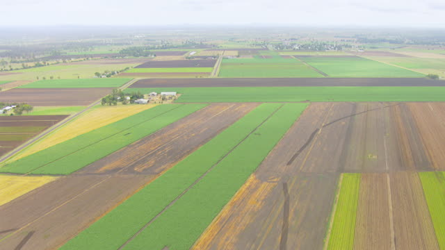 WS AERIAL View of farm field / Brisbane, Queensland, Australia