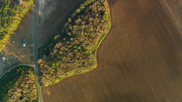 WS AERIAL View of farm field / North Carolina, United States