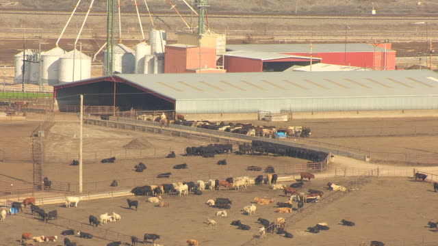 WS AERIAL ZO View of farmer riding horse away from feedlot in Ford County / Kansas, United States