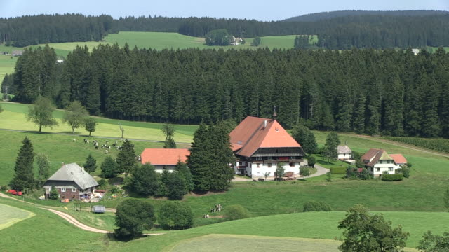 MS View of farmhouse / St. Maergen, Baden-Wuerttemberg, Germany