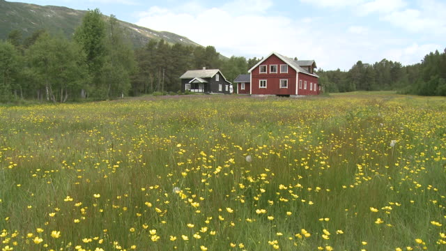 ws view of farmhouses / rauland, telemarken, norway - telemark stock videos and b-roll footage