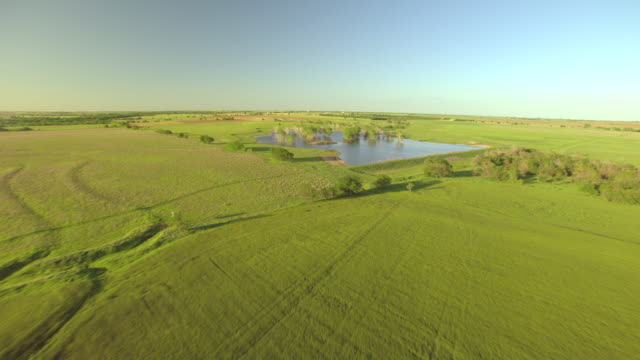 ws aerial view of farmland and pond with trees / kansas, united states - kansas stock videos and b-roll footage
