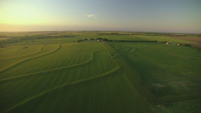 ws aerial view of farmland and shining sun at sumner county / kansas, united states - kansas stock videos & royalty-free footage