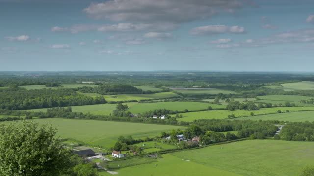 WS View of farmland / Hampshire, United Kingdom