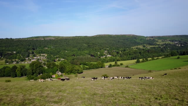 View of farmland near Calver and Froggatt, Peak District National Park, Derbyshire, England, United Kingdom, Europe