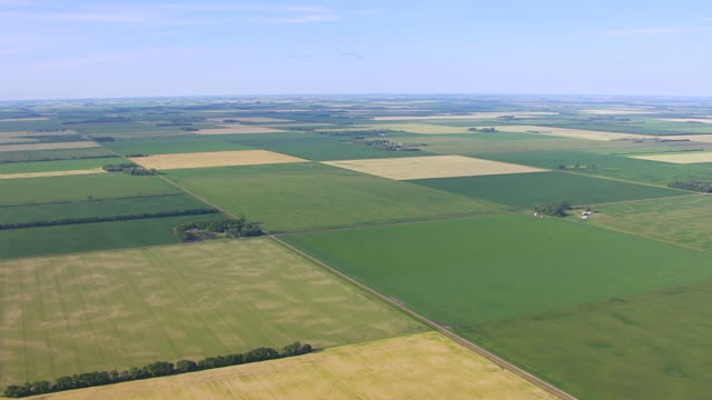 WS AERIAL View of Farmland / North Dakota, United States