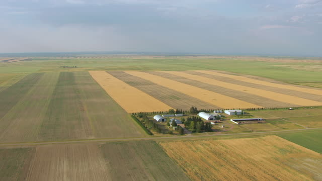 vidéos et rushes de ws aerial view of farmland / slater, wyoming, united states - patchwork landscape