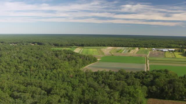 vídeos y material grabado en eventos de stock de ws aerial view of farmland to pine barrens / new jersey, united states - paisaje mosaico