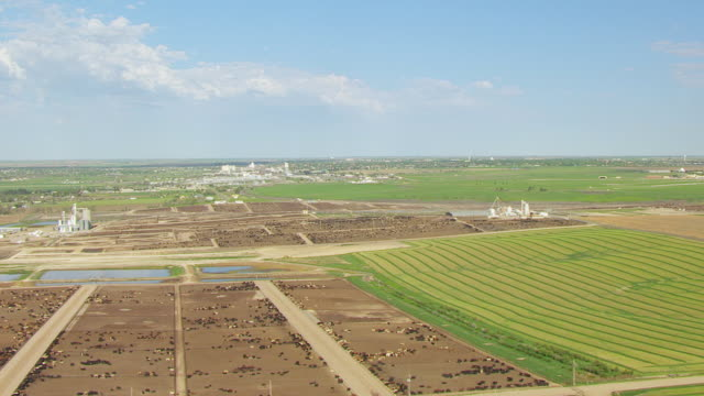 vídeos de stock e filmes b-roll de ws aerial view of farmland with cattle feedlot in ford county / kansas, united states - kansas