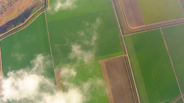 WS AERIAL View of field and clouds / Ayr, Queensland, Australia
