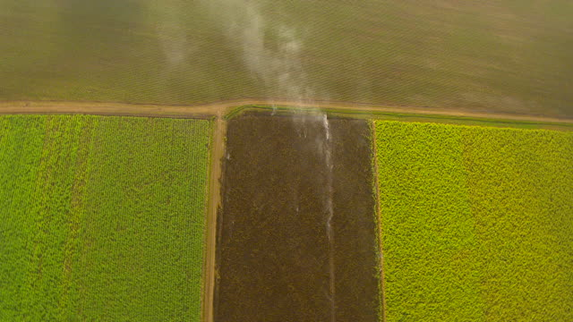 ws aerial zo view of field and smoke / ayr, queensland, australia - ayr stock videos & royalty-free footage