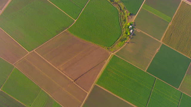 ws aerial view of field / ayr, queensland, australia - farm stock videos & royalty-free footage