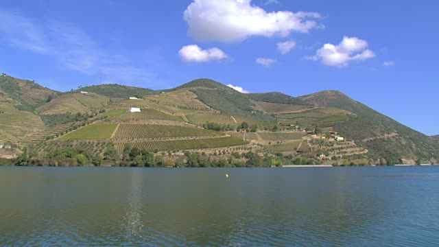 WS View of Field on mountains with river / Porto, Portugal